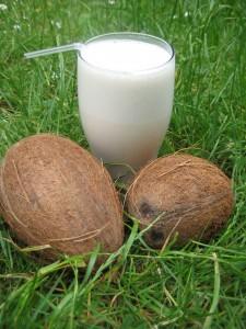coconutpeanutbuttermilk
